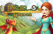 Download en speel Druid Kingdom