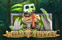 Download and play Wild TurkeyOnline