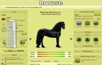 Download and play HowrseOnline